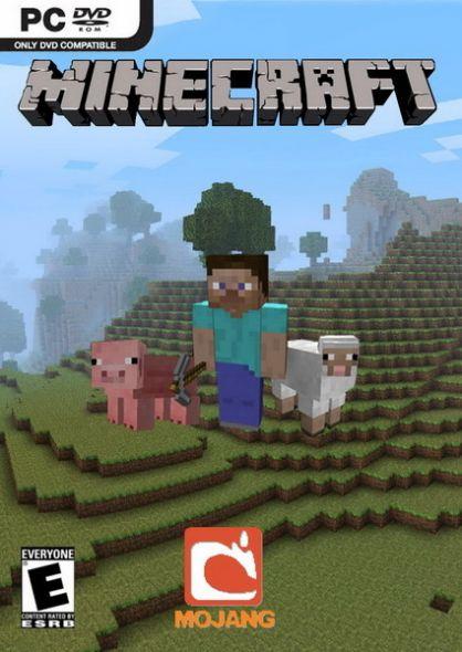 Minecraft (PC/MAC)