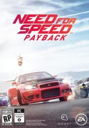 Need for Speed Payback (PC)