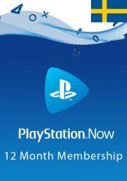 Sweden PlayStation Now: подписка на 12 месяц
